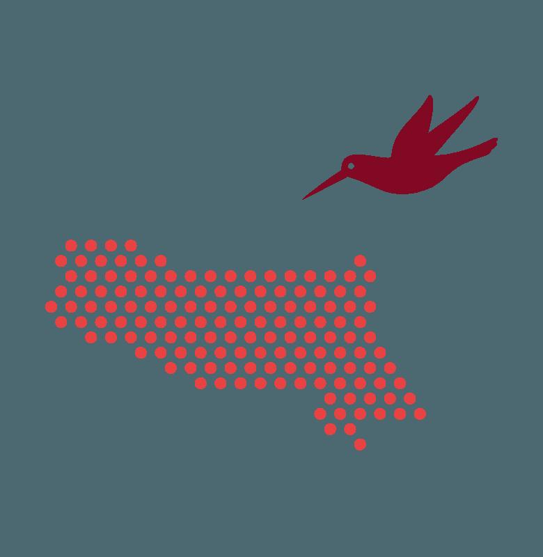 colibri-map_bianca