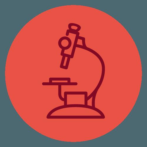 colibri-servizi-ricerca-1-big