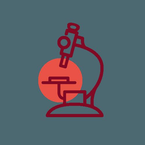 colibri-servizi-ricerca-2-big