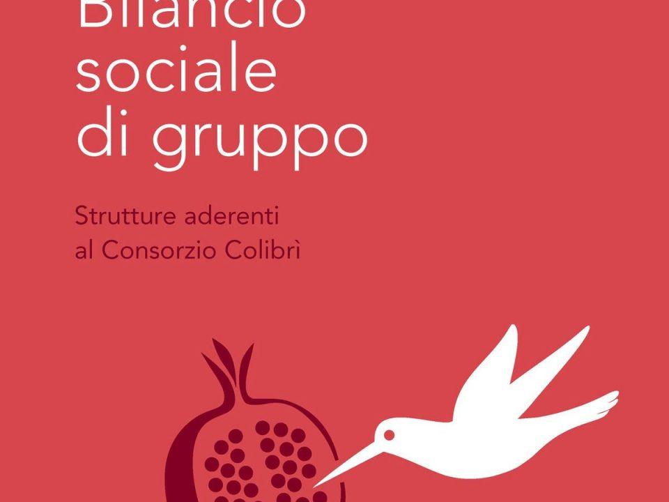 Copertina Bilancio Sociale Colibrì